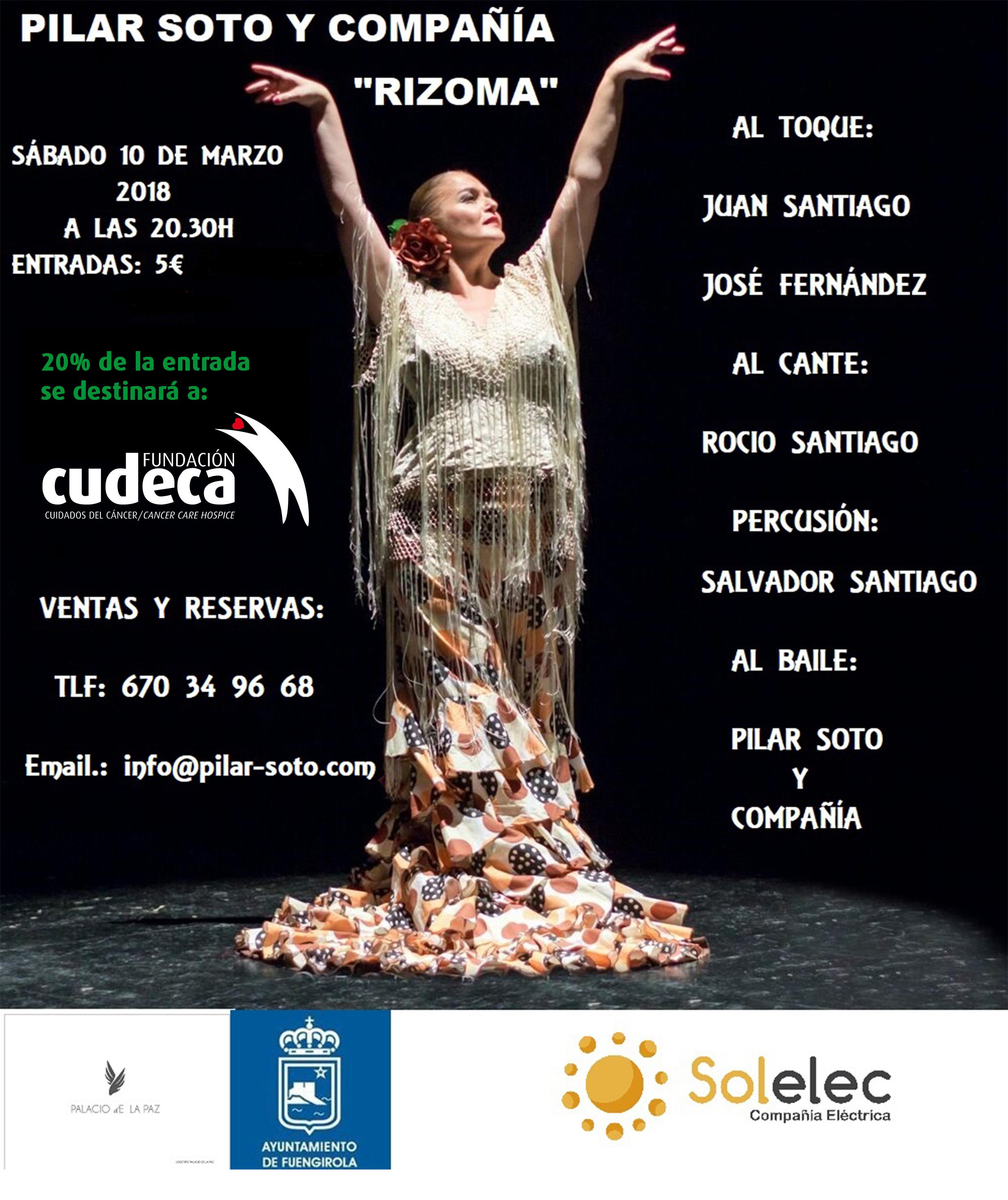 """Baile Flamenco """"Rizoma"""" de Pilar Soto"""