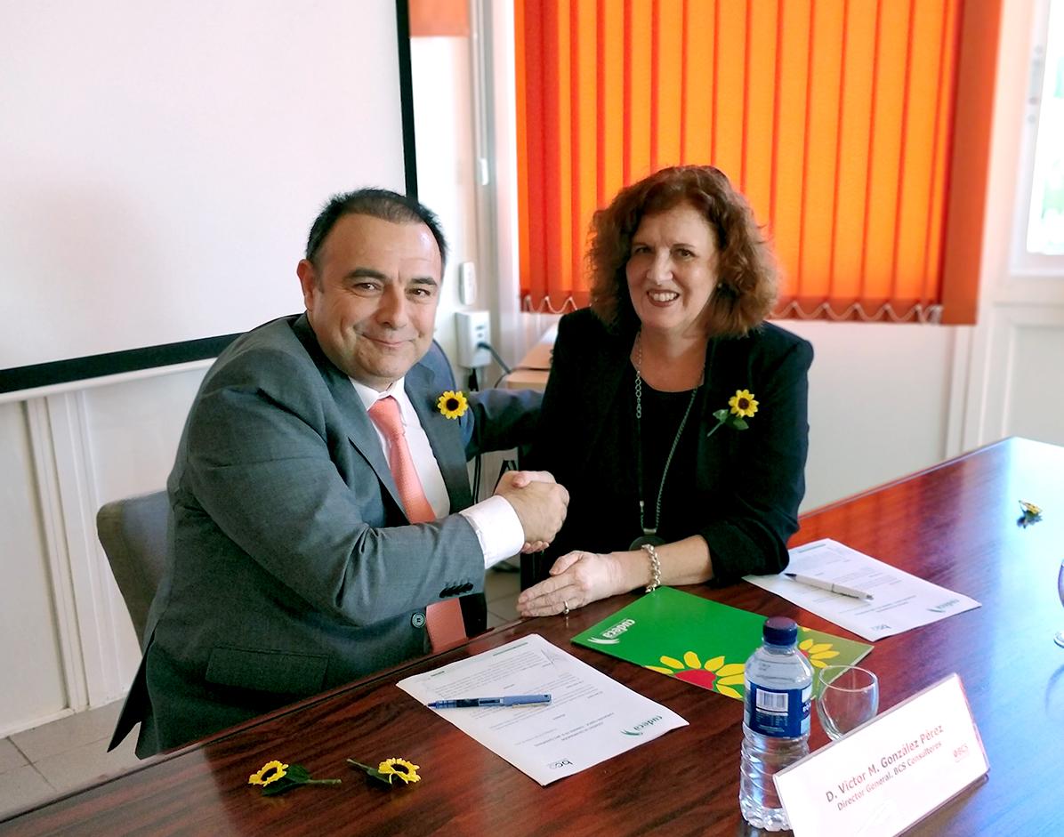 Firma del convenio BCS Consultores y CUDECA